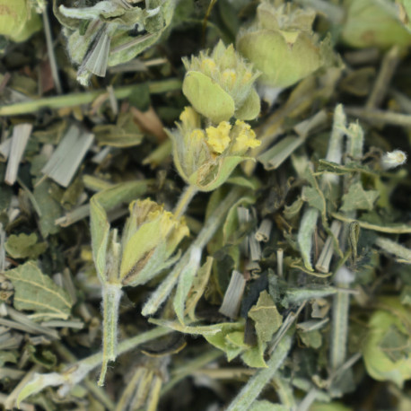 D -Tox Olympus Tea