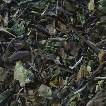 Pai mu tan (Λευκό τσάι)